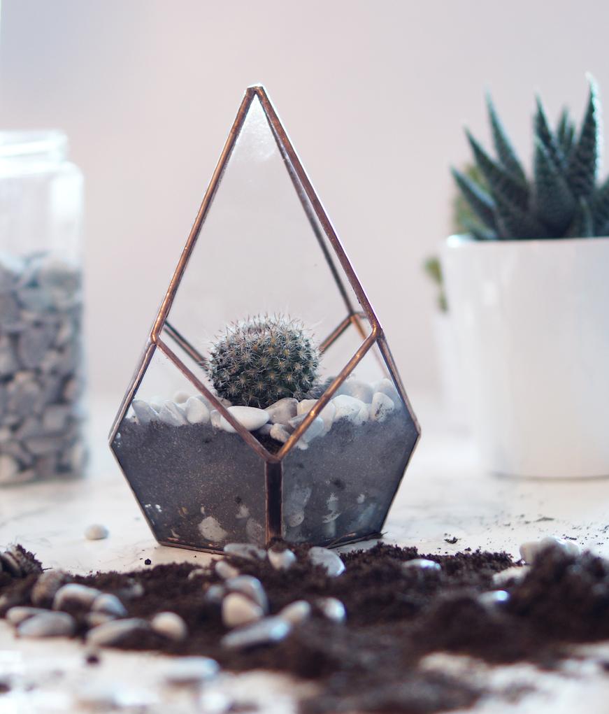DIY Cactus Glass Terrarium